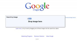 Google shows the place to drop the image bieng dragged